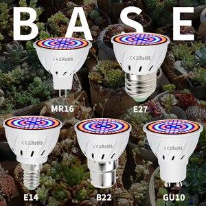 Image 2 - AC220V E27 مصابيح Phyto E14 مصباح Led Fitolampy GU10 للنباتات B22 الطيف الكامل الشتلات لمبة MR16 Led تنمو ضوء الأشعة فوق البنفسجية الأشعة تحت الحمراء 4 واط 6 واط 8 واط