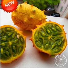 Best-Selling!Dutch Cucumber,Cucumber Seeds Fruits and Vegetable Seed  50 Seeds / lot,#AD4CQ1