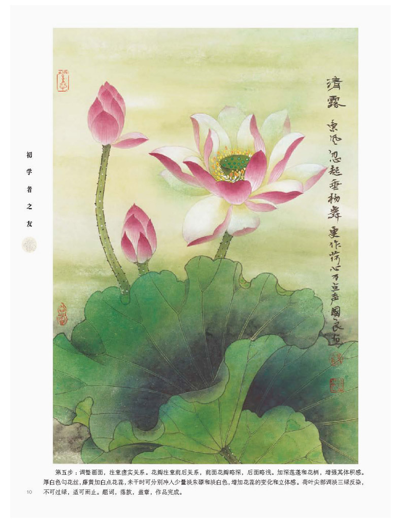 Chinese painting book lotus flower by gongbi meticulous brush work chinese painting book lotus flower by gongbi meticulous brush work art beginner in books from office school supplies on aliexpress alibaba group izmirmasajfo