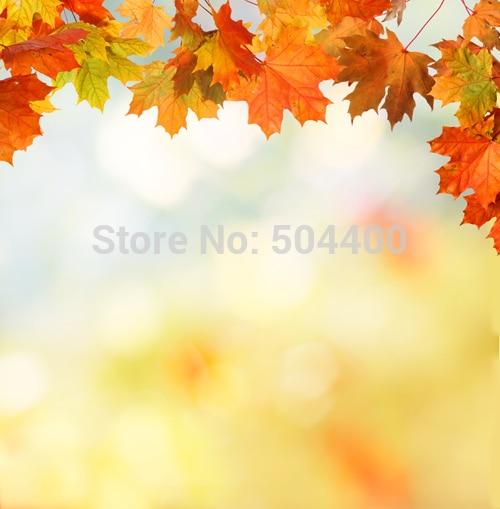 5X7ft Art fabric photo studio newborn backdrop photography background autumnal scenery backdrop D-2781