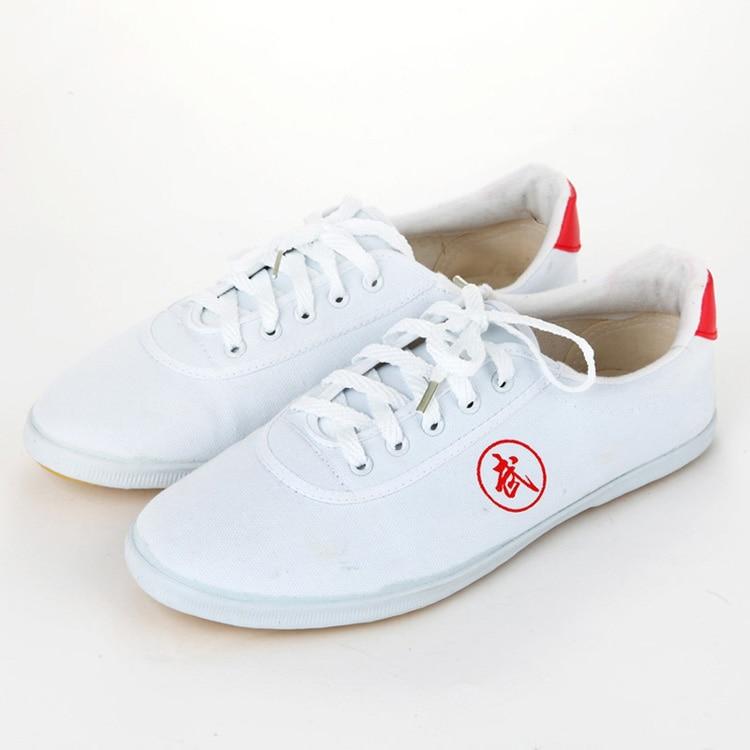 Высокое качество тай-чи Обувь ребенка в школу белые спортивные Обувь Боевые искусства Для мужчин Для женщин Тайцзи Wu Шу обуви кунг-фу 5 видов цветов - Цвет: WHITE 1