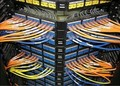 12000 unids/lote, 83x26mm cable de red etiqueta autoadhesiva, prooft agua, resistente a la rotura, artículo no. HT02