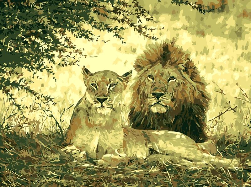 Tanpa Bingkai Singa Pasangan Hewan Diy Lukisan By Angka Cat On
