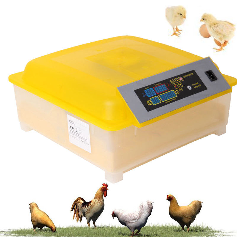 L'UE Gratuite! Automatique Numérique contrôle de la température Incubateur Écloserie Couveuse Pour 48 Oeufs