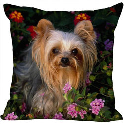 Śliczne piękne Yorkshire Terrier poszewka 16x16 cali doskonała jakość miękkie poduszki przypadki w Poszewka na poduszkę od Dom i ogród na