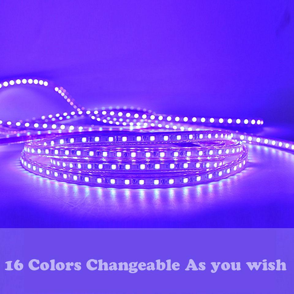https://ae01.alicdn.com/kf/HTB1czrIqgaTBuNjSszfq6xgfpXaC/GD-LED-strip-IP65-5M-6M-7M-8M-9M-10M-11M-12M-13M-RGB-Led-Strip.jpg