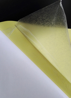 Double Sides Adhesive Sticky Sheet Sticker for Handmade DIY Paper Craft Picture Use A5 (14.8cmx21cm)