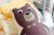 1 Pc Início Decoração do Quarto Crianças Urso de Panda Bonito Almofada Do Sofá Jogar Travesseiro