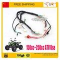 200CC 250cc QUAD ATV ZONGSHEN LONCIN LIFAN YX piezas conjunto cable eléctrico alambre electrónica accesorios quad atv envío libre