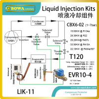 30HP Compressor Liquid Injection Kits Is Working As Compressor Protector To Avoid Compressor Temperature Too Much