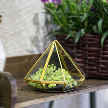 Tabletop Gold Diamond Glass Succulent Plant Moss Display Flower Pot Small Windowsill Planter Centerpiece Geometric Terrarium Box