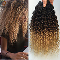 Ombre Malaysian Virgin Hair 6A Malaysian Curly Virgin Hair Wet and Wavy Virgin Malaysian Hair Weave 3 Bundles Bloned Jerry Curl