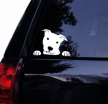 Tshirt Rocket Pitbull Decal - Peeking Peek A Boo Pit Face Bull Dog Car Decal, Laptop Window Sticker (7, White)
