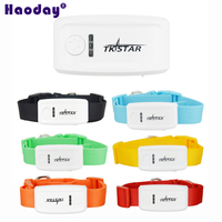 Realtime Tracking TK909(No Box) Pet GPS Tracker Global Mini GPS GPRS GSM Cat Dog Tracker with Collar 6 Color To Choose