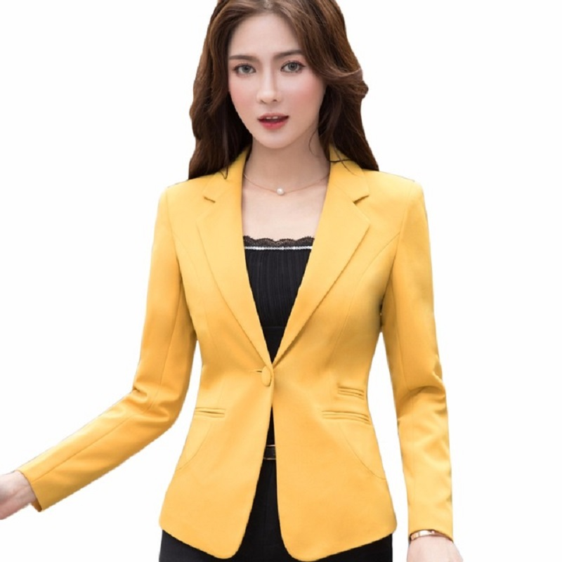 Hot Sale 2018 Women Basic Coats Office Blazer Feminino Elegant