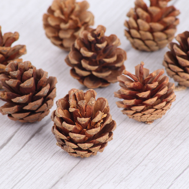 10pcsธรรมชาติPine Conesอุปกรณ์Photo Propsคริสต์มาสตกแต่งต้นไม้Toppers Pinecone Xmasปีใหม่DIYตกแต่ง