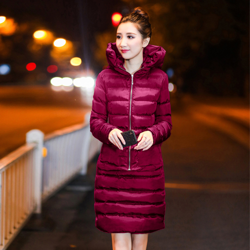 SexeMara Real Shot 2018 Winter New Down Cotton Suit Fashion Suit Female Small Fresh Warm Hooded Two-Piece Elegant Dress (10)