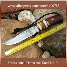 DT084 damascus steel knife high quality fixed collection gift hunting knife camping knife