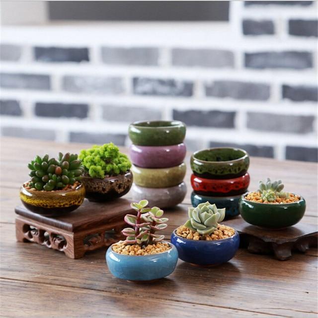 aliexpress: comprar multicolor mini jugosa macetas plantas de