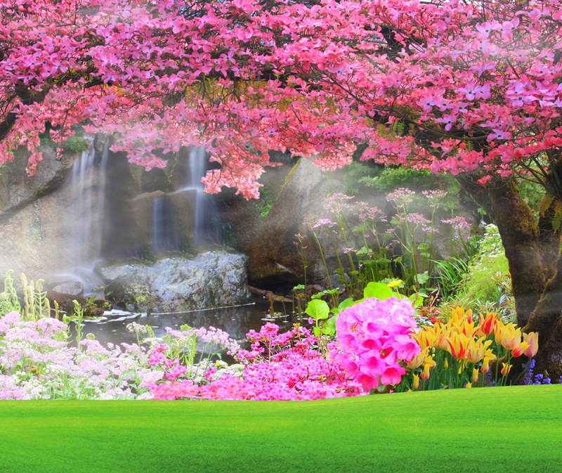 HUAYI Pink Flower Tree Photography Backdrops Green Grass