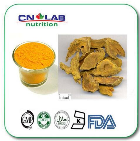 100% Organic Natural Turmeric Root Extract 1kg/bag Pure Turmeric Extract 95% Curcumin Powder with the best price for sale hot sale pure plant extract quercetin dihydrate 95