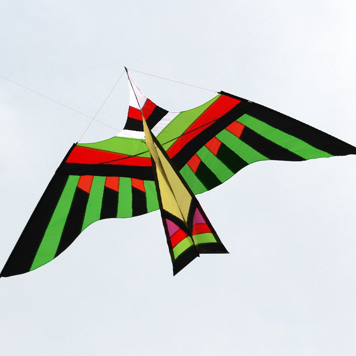 Free Shipping Outdoor Fun Sports High  Quality 3m Power  Bird Kite  With Handle And Line Good Flying