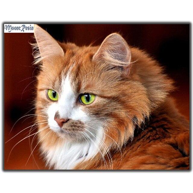 Mooncresin Diy Diament Malarstwo Brązowy Kot Haft Krzyżykowy Haft