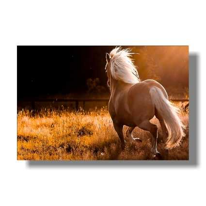 scandinavian style galloping horse office wall painted fabric poster 32 x 48 24 x 36 inch no frame painting calligraphy aliexpress
