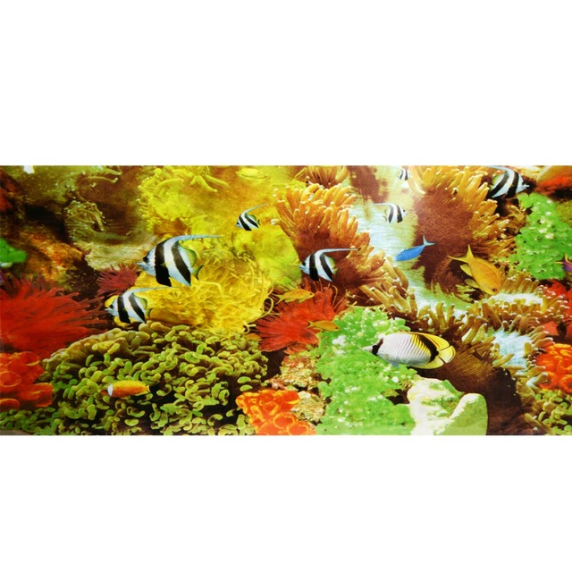 New Aquarium Fish Tank Beautiful Background Poster Cute Animal Sticker Ocean Decorative Wall