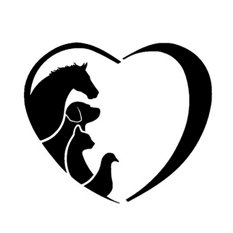 FASHION ANIMAL LOVER Pet Dogs And Cats Veterinarian Horse Window Decal Stickers Car Stickers CT-592