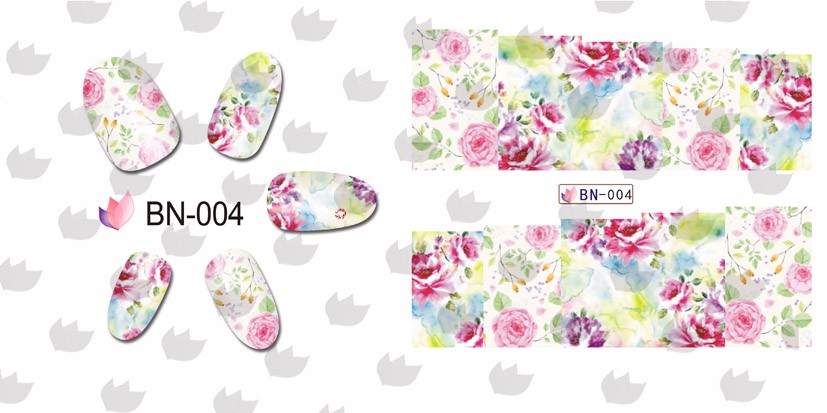 BN-004