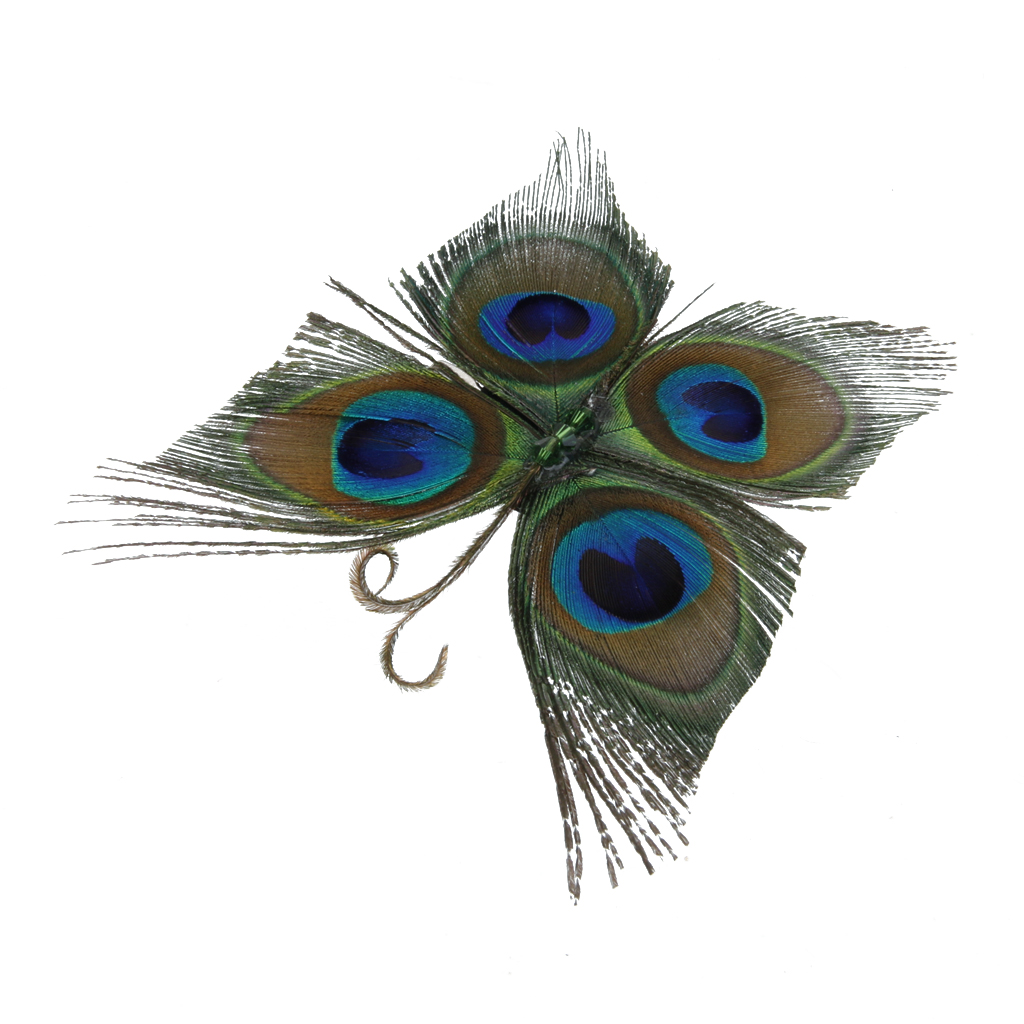 vintage-peacock-feather