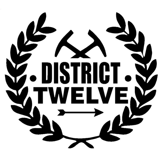 district 14 hunger games