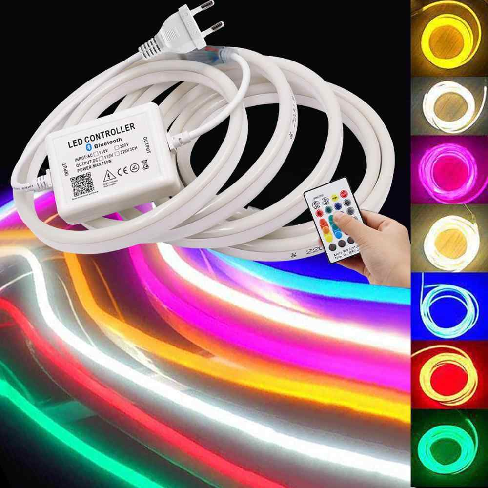 110V 220V RGB Led Neon Sign Light SMD5050 Flexible LED Neon Ribbon Waterproof Neon LED Strip Light with 750W Bluetooth Control