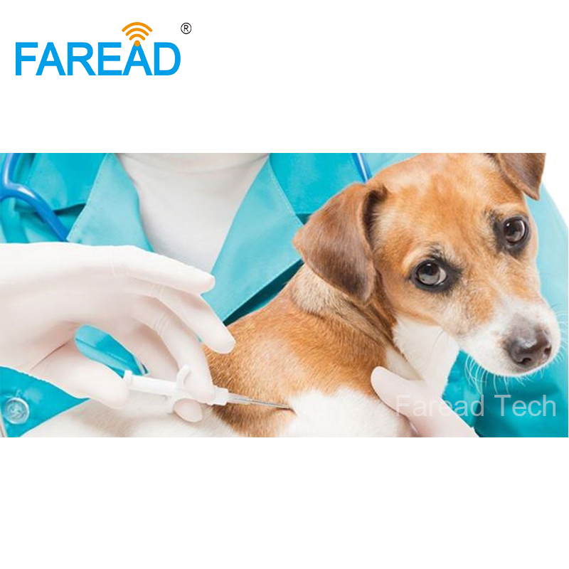Free Shipping 1.4*8mm 134.2KHz Pet Microchip RFID Glass Tag Chip For Animal With Veterinary Syringes