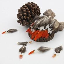 Venda por atacado! 20 pcs 5-10 cm de Comprimento ponta Vermelha Senhora Amherst Faisão penas da cauda para DIY artesanato decorações Dreamcatcher frango plumas