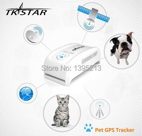 Dispositif de suivi GPS pour animaux de compagnie étanche de haute qualité + traqueur pour animaux de compagnie
