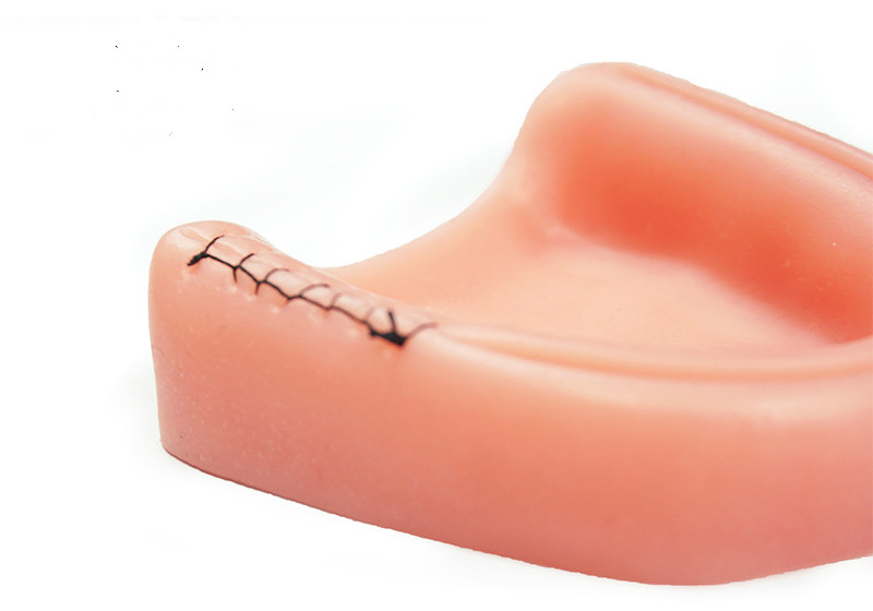Periodontitis Training Anatomy EasyThru 4
