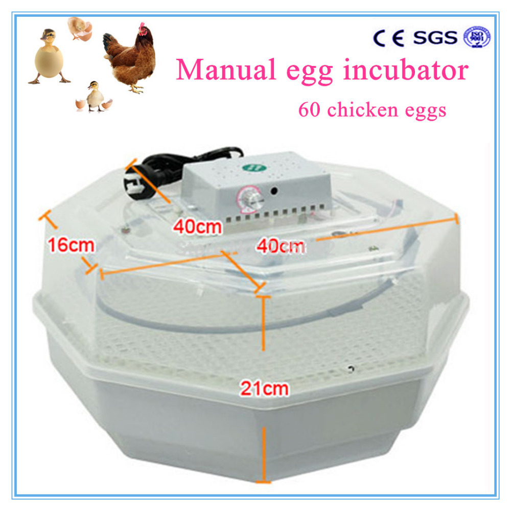 New model 60 eggs manual JN2-60 chicken egg incubator price for Poultry Chicken Duck Bird egg high quality holding 60 chicken eggs manual jn2 60 mini egg incubator high hatching rate