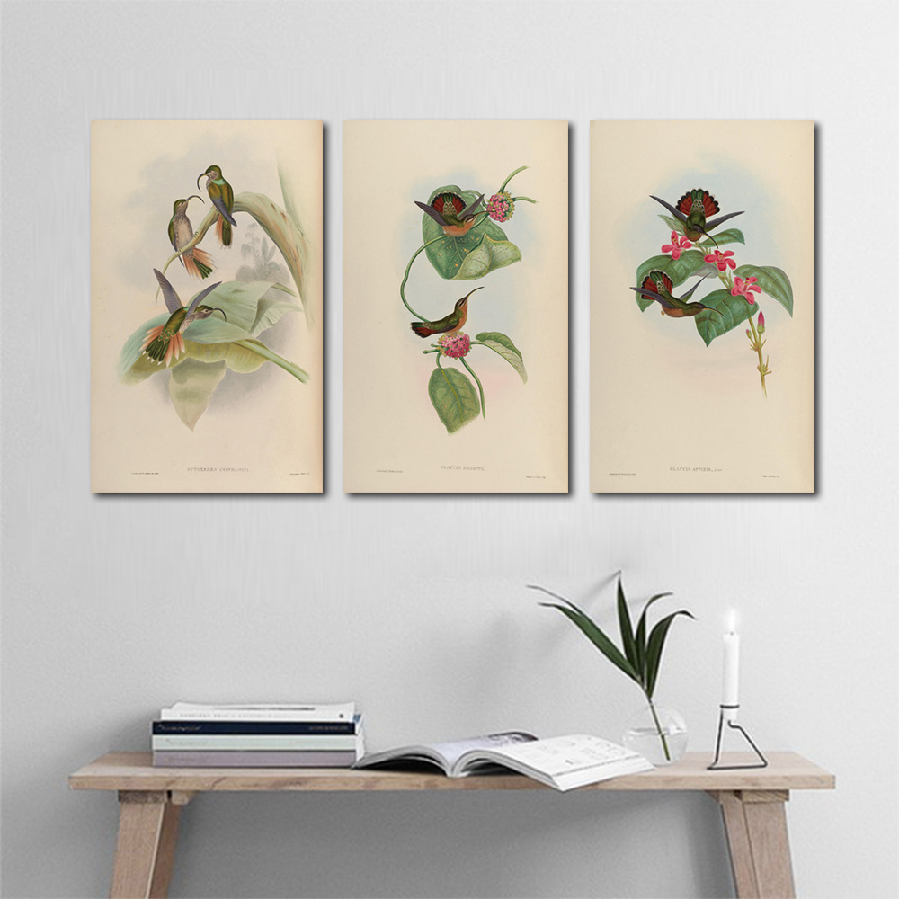 Unframed Multiple Pieces HD Canvas Painting Hummingbird Wall Pictures Prints Wall Pictures For Living Room Wall Art Decoration
