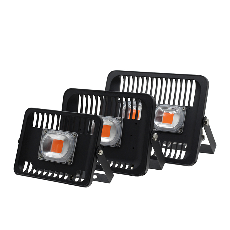 Led Grow COB Lights Full Spectrum Plant Lamp 30W 50W 100W AC220V Outdoor Floodlight IP66 For Growth Phytolamp Light From RU CN