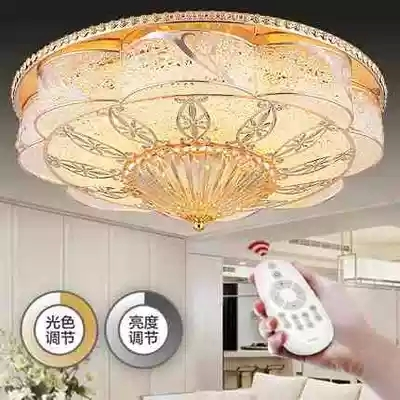 2017 NEW Acrylic Led Ceiling Light Lamp Cover Drawing  Living Room Light Modern  Brief Led Ceiling Lamp Dia48/26cm Dimming Light