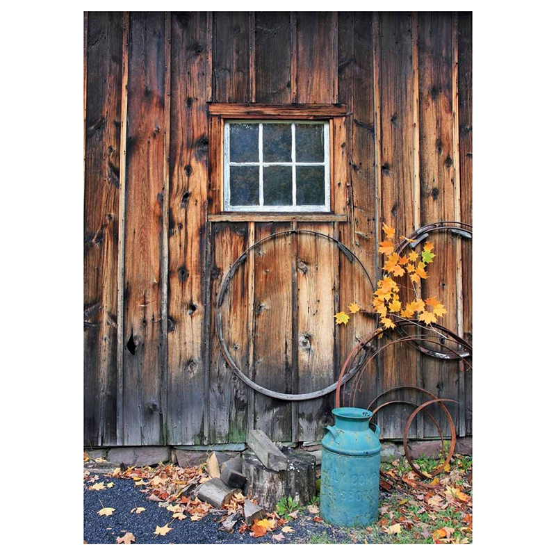 Windows Photography Backdrops Studio Photo Background Vinyl Autumn for Kid 5x7ft