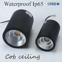 LED impermeable Ip65 COB techo montado en la superficie al aire libre 12W 20W 30W AC85-265V blanco cálido LED downlight Hotel villa hogar iluminación