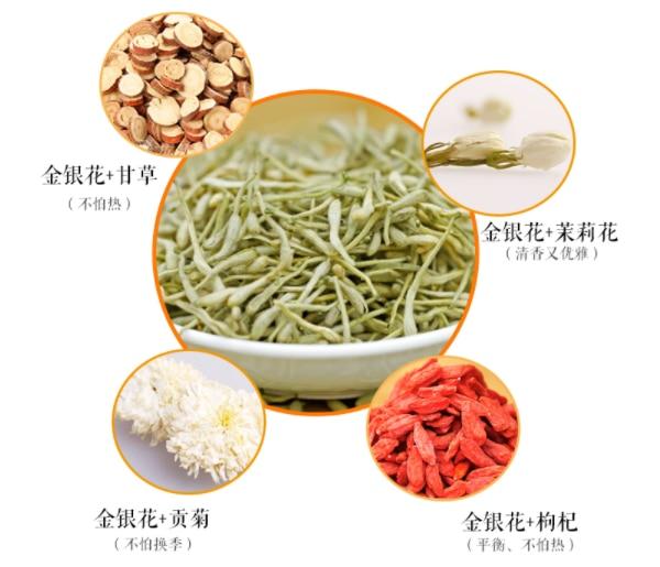 金银花茶的功效和作用及禁忌