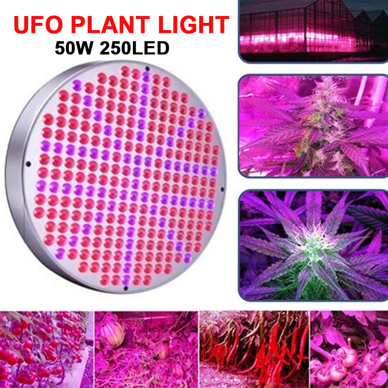 250LED 50W Full Spectrum Plant Lamp Led Grow Light Plants Growth Light Energy Saving Panel High Brightness For greenhouse  plant LED Grow Lights     - title=