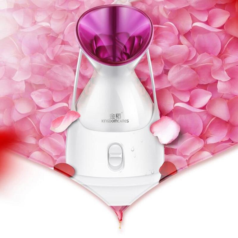 Small Air Conditioning Appliances 220v Face Steaming Humidifier Hot Fog Nano Spray Water Replenishing Household Skin Moisturizing Steamer Eu/au/uk