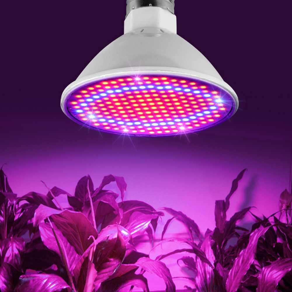 Full spectrum LED Grow Light Bulbs 60 126 200 LED Lamp for Seeds hydro Flower Greenhouse Veg Indoor garden hydroponics E27 220V
