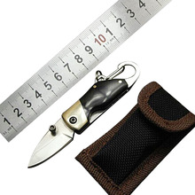 New Stainless Steel Mini folding knife with carabiner hanging buckle hike Outdoor Camp Survive kit portable Pocket tool