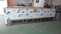 Multi Tank Ultrasonic Cleaner
